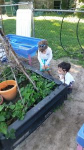 Kids Working on Outdoor Plant Boxes